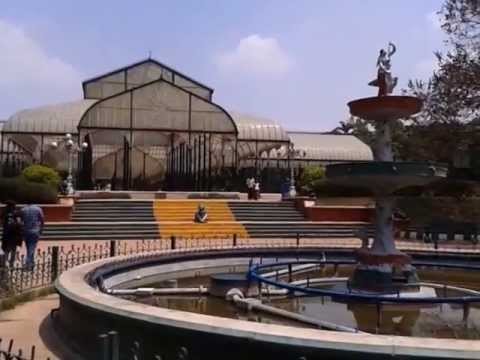Lal Bagh Botanical Garden - Places to Visit in Bangalore, India