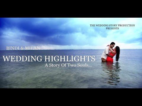 Milan and Bindi - Wedding Highlights