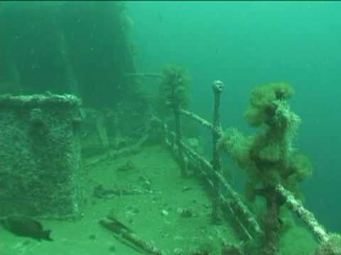 Ship Wrecks  | Diving On The Deck of the PLM-27, Conception Bay, Newfoundland, Canada