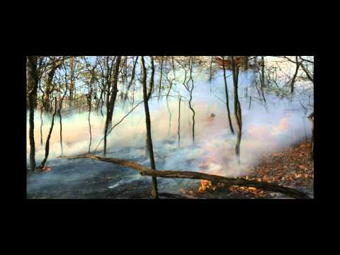 Controlled Burn Exercise - 2014