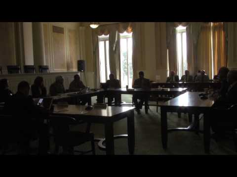 Arkansas State Agencies & Government Affairs on SJR1 part 1