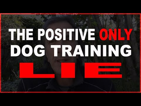 Positive ONLY Dog Training is a LIE - Train Your DOG the BEST WAY