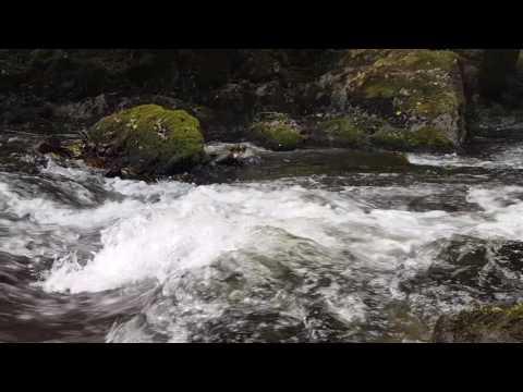 River the Lesse Belgium  (part 2)