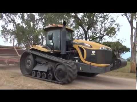 Why Allclass North Are Queensland's No. 1 Mini Excavator Dealer