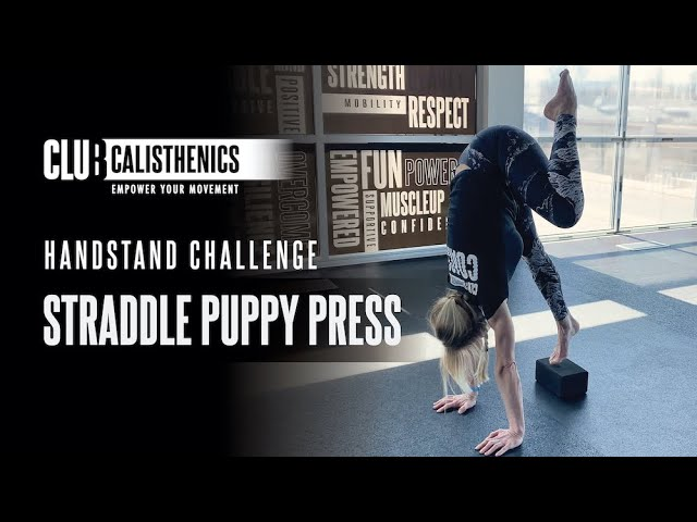 DAY 21 - Puppy Press Handstand