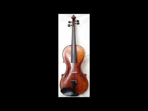 Tu He Ray-Violin