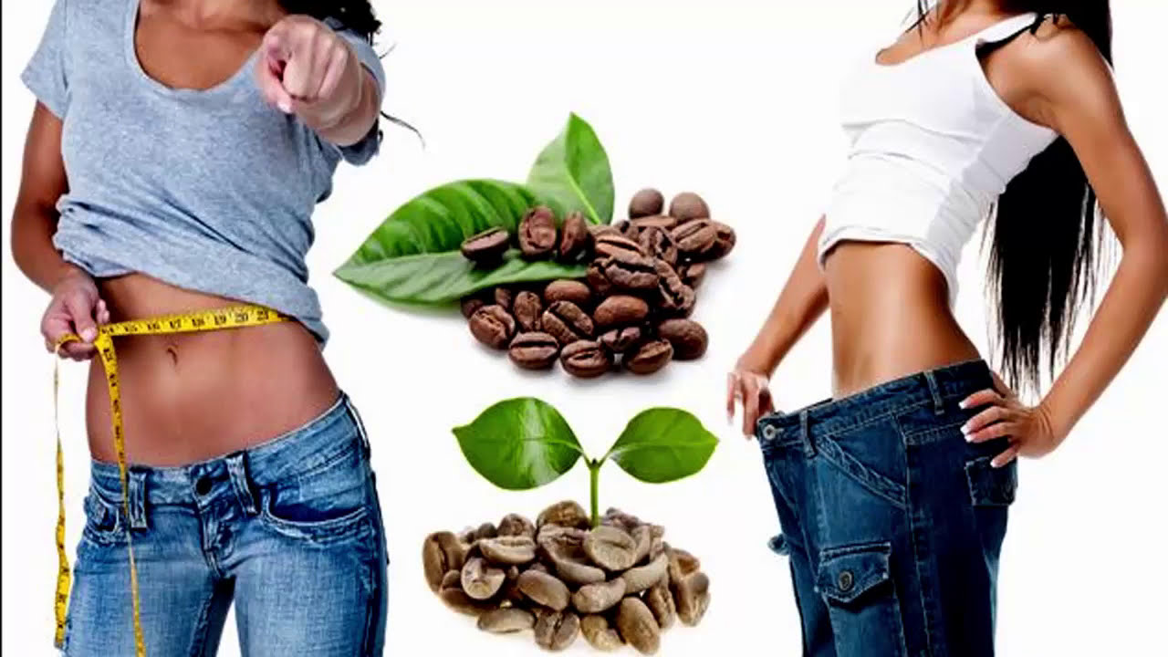 Weight Loss Metabolism And Green Coffee Bean Extracts Dr Ken And
