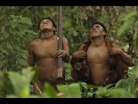 hunt  monkeys and boar Yanomami indigenous in the Amazon jungle -Full Documentary 1983