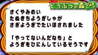 村の掲示板に衝撃のニュースが載ってた【どうぶつの森e+】#4