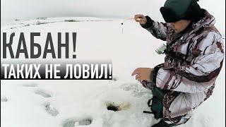 Я ТАКИХ НЕ ЛОВИЛ Рыбалка 2020 на мормышку в палатке