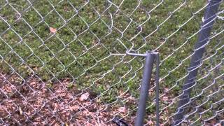 How To Patch And Repair A Chain Link Fence Diy