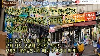 한국의 유일한 애완동물거리 청계천 애완동물 거리를 가다!! 센터의 학창시절, 공부와 친구대신 열정을 선택했던 곳. // I visited S.korea animal street.