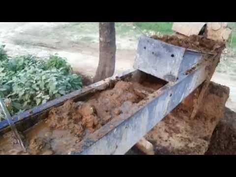 COW DUNG producing Biogas, Electricity / Power, Organic Manure