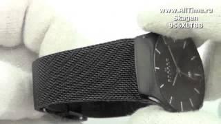 видео Мужские часы skagen 809xltrb