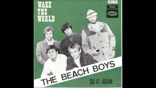 Watch Beach Boys Do It Again video