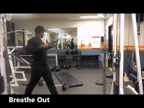 Standing Cable Row to Chest - Fumbi Fitness - Personal Trainer - Toronto, ON