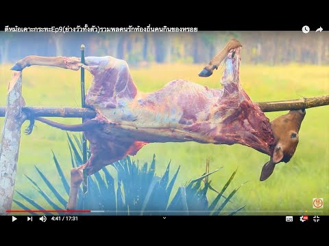 ตีหม้อเคาะกระทะEp9(ย่างวัวทั้งตัว)รวมพลคนรักท้องถิ่นคนกินของหรอย