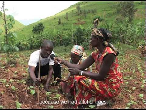 BUSINGA - participatory video DVD1: Causes, Consequences and Solutions to Deforestation