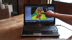 hqdefault - Thermography Diagnostics In Equine Back Pain