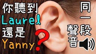 【解說】為什麼大家會聽到不同的字? 「Yanny & Laurel」 事緣及分析差異成因