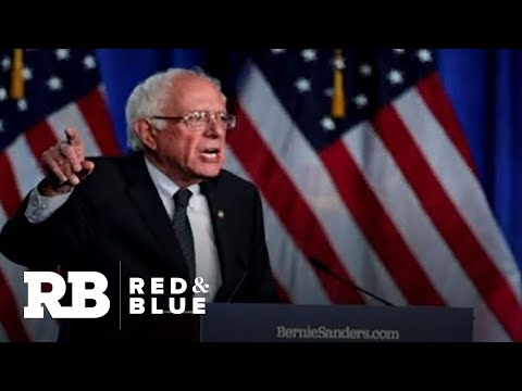Sanders Campaign: It's Absolutely Critical We Win New Hampshire