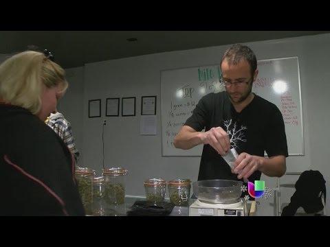 Las ventas de marihuana rompen récord en Colorado -- Noticiero Univisión