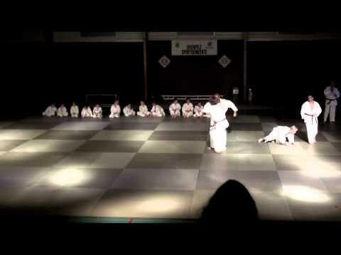 Nacht der krijgskunst 2011 - Judo