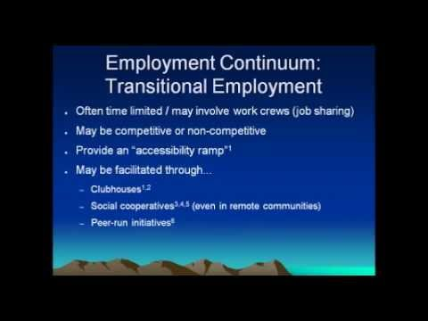 Webinar: Working with Individuals with Mental Health Issues - An Employment Perspective: Part III