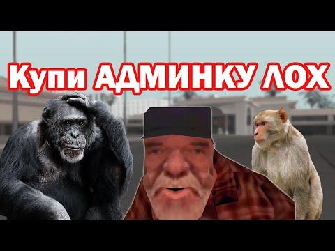 В мире обезьян, Кто и что играет на Нубо-РП. Нарезка веселых моментов GTA SAMP