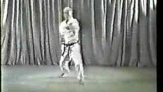 Tatsuo Suzuki Kata Pinan Godan Karate Wado Ryu