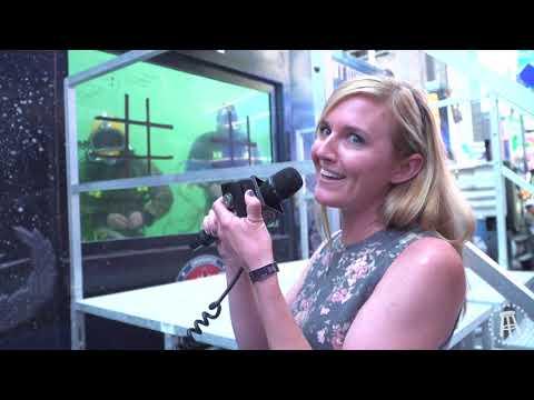 Deep Diving Into NYC Fleet Week
