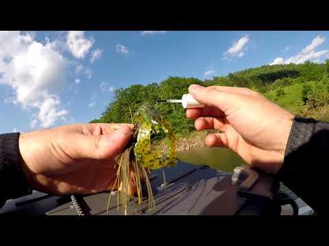 Fishing For BIG BASS At Pine Creek Reservoir