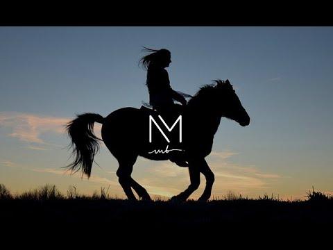 Jeddah Arabian horse riding experience