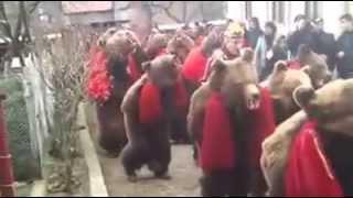 Ursul Traditie romaneasca