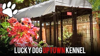 Lucky Dog Kennels