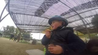 Three year old extreme sports training