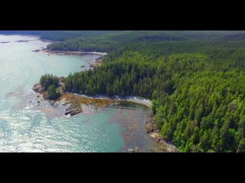 Langara Island 2017 - From The Air
