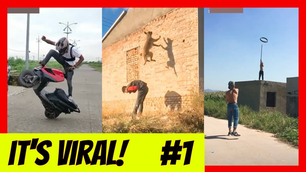 The Viral Feed #1 | Funny Video Compilation | Awesome Trending Videos #Viral