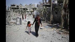 Enfrentamientos en la franja de Gaza: Dos muertos