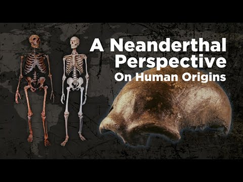 A Neanderthal Perspective on Human Origins
