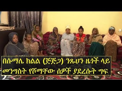 ዜጎች ላይ መንግስት የሾማቸው ሰዎች ያደረሱት ግፍ | Ethiopia's Somali region & human rights abuse by government people