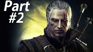 The Witcher 2 Assassin