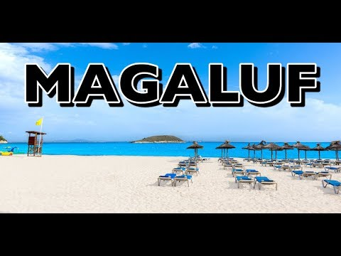 Magaluf Beach Party Virtual Tour On Majorca Island In Spain
