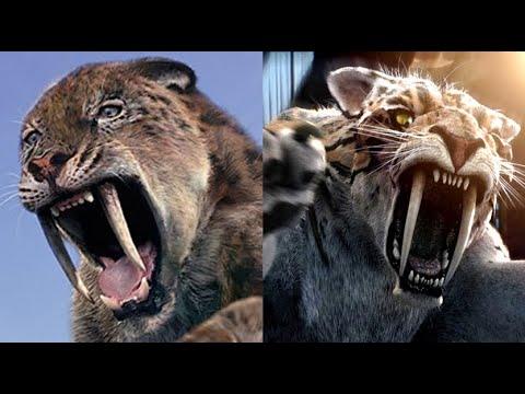 "Download Creatures Comparison - ""Walking With"", Prehistoric Park & Primeval"