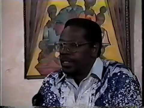 Mhenga Amos N.  Wilson:  Riot or Revolt Urban Responses to White Hegemony