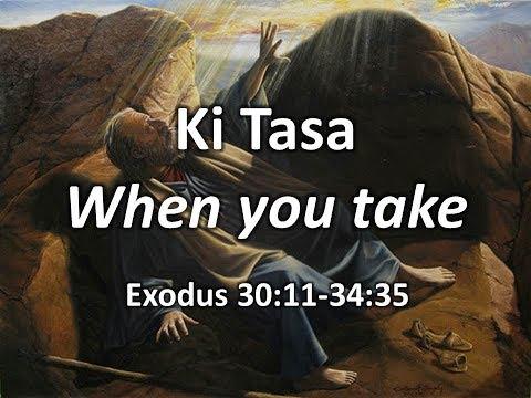 Weekly Torah Portion: Ki Tasa