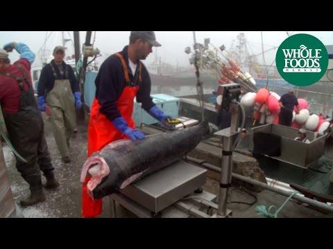 Harpoon-Caught Swordfish | Seafood | Whole Foods Market®