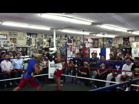 Kobe Bryant Watches Manny Pacquiao Sparring at Wildcard