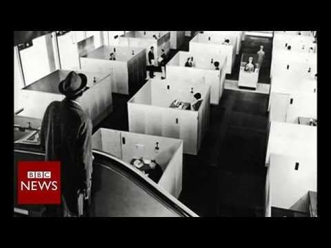How did we end up working in cubicles? - BBC News