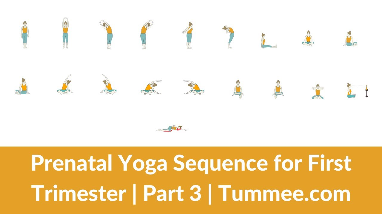 Prenatal Yoga Sequence First Trimester Yoga Sequence Planning For Yoga Teachers Part 3 Tummee Com Youtube